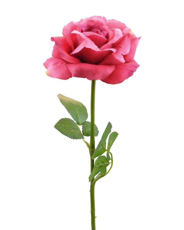 Flower Open Rose Pink (Set of 6)