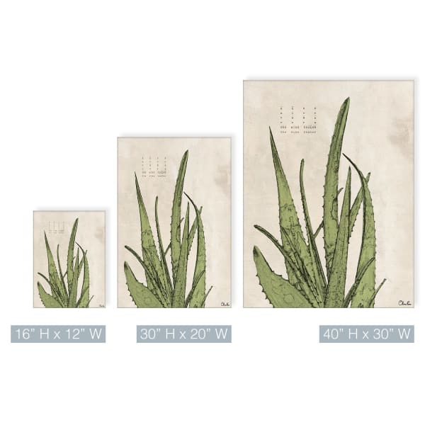 Poetic Flora XIX Green Canvas Succulent Wall Art