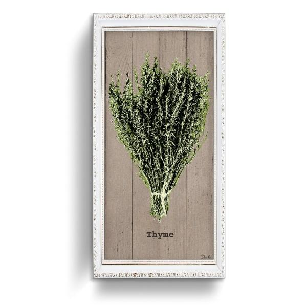 Thyme Herb Green Canvas Wall Art
