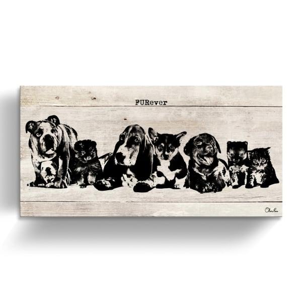 Furever Friends Beige Canvas Pet Wall Art