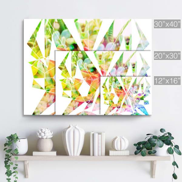 Succulent Spectrum Multicolored Canvas Wall Art