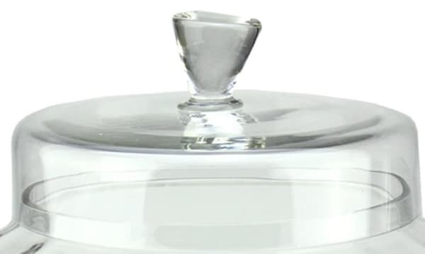 Transparent Segmented Glass Container with Lid