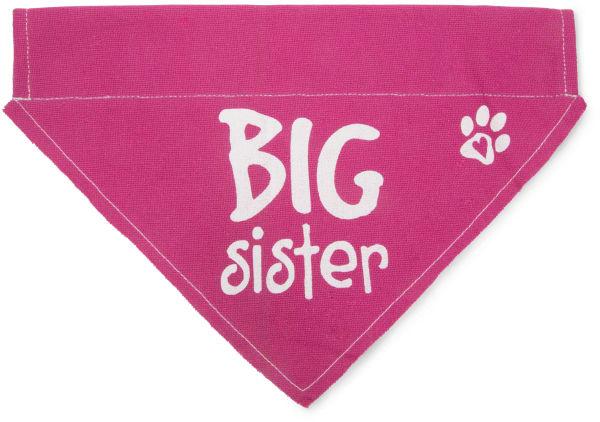 Big Sister Large Slip on Pet Bandana
