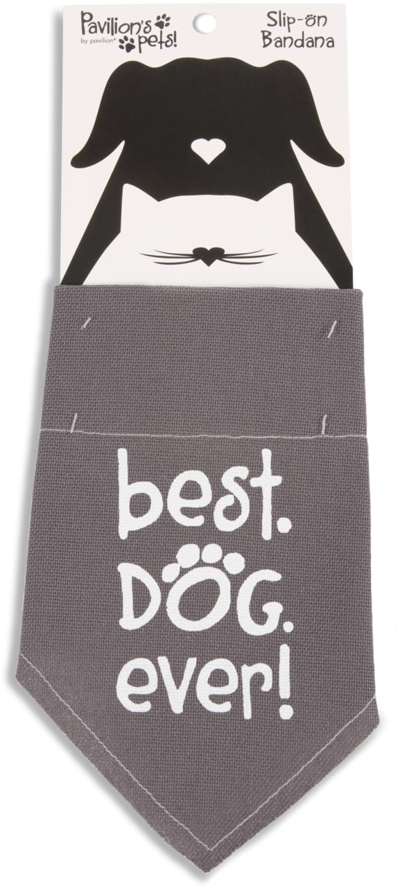 Best Dog Ever Large Slip on Pet Bandana