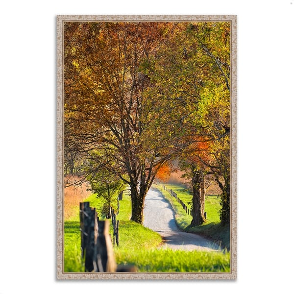 Fine Art Giclee Print on Gallery Wrap Canvas 26 In. x 38 In. Country Road I Multi Color