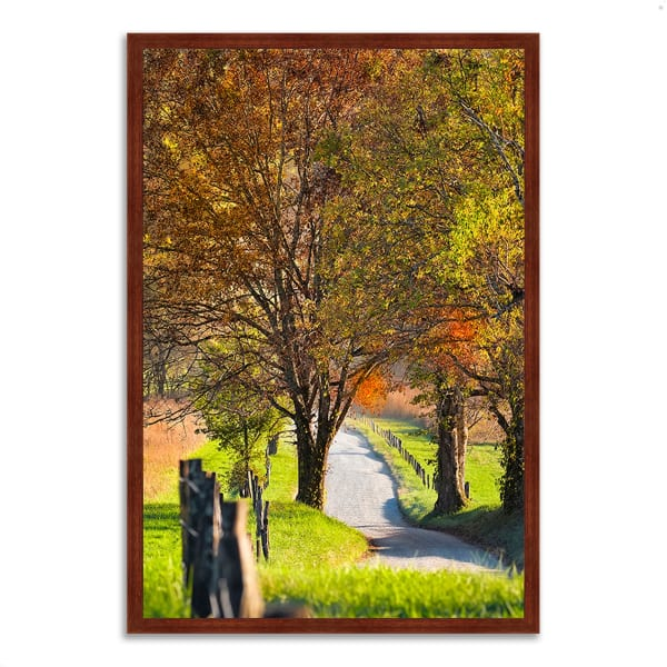 Framed Photograph Print 26 In. x 38 In. Country Road I Multi Color