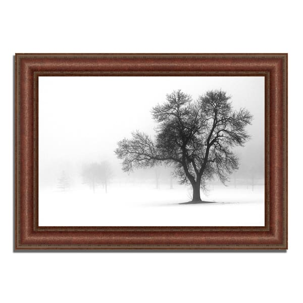 Framed Photograph Print 43 In. x 31 In. Reaching Out Multi Color