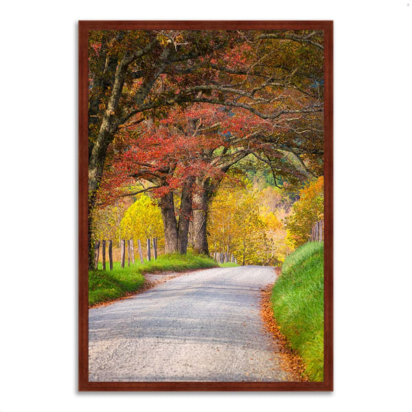 Framed Photograph Print 32 In. x 47 In. Country Road I Multi Color