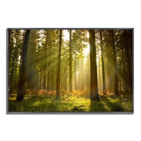 Fine Art Giclee Print on Gallery Wrap Canvas 32 In. x 22 In. Forest at Dusk Multi Color