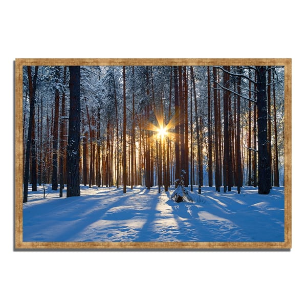 Framed Photograph Print 47 In. x 32 In. Sunset Starburst Multi Color