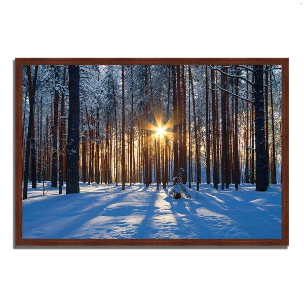 Framed Photograph Print 47 In. x 32 In. Sunset Starburst Multi Color