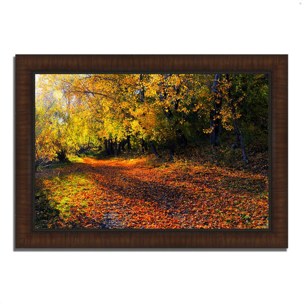 Framed Photograph Print 36 In. x 26 In. Auburn Trail Multi Color