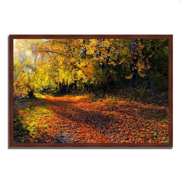 Framed Photograph Print 47 In. x 32 In. Auburn Trail Multi Color
