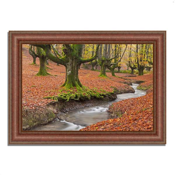 Framed Photograph Print 37 In. x 27 In. Otzarreta Beech On A Red Carpet Multi Color
