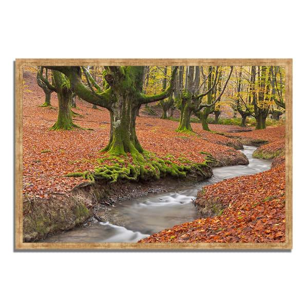 Framed Photograph Print 59 In. x 40 In. Otzarreta Beech On A Red Carpet Multi Color