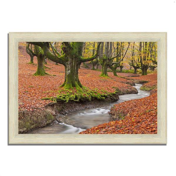 Framed Photograph Print 36 In. x 26 In. Otzarreta Beech On A Red Carpet Multi Color