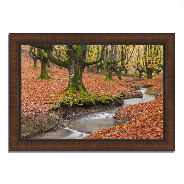 Framed Photograph Print 42 In. x 30 In. Otzarreta Beech On A Red Carpet Multi Color