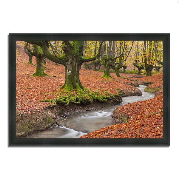 Framed Photograph Print 60 In. x 41 In. Otzarreta Beech On A Red Carpet Multi Color