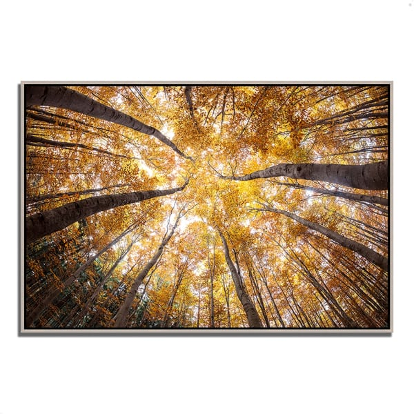 Fine Art Giclee Print on Gallery Wrap Canvas 32 In. x 22 In. Reach For The Sky Multi Color