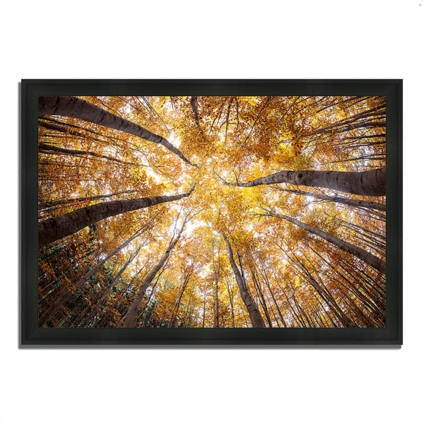 Framed Photograph Print 39 In. x 27 In. Reach For The Sky Multi Color