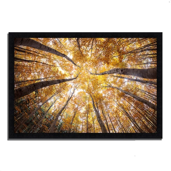 Framed Photograph Print 33 In. x 23 In. Reach For The Sky Multi Color