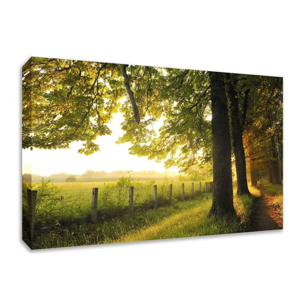 Fine Art Giclee Print on Gallery Wrap Canvas 36 In. x 24 In. Fresh Morning Sun Multi Color