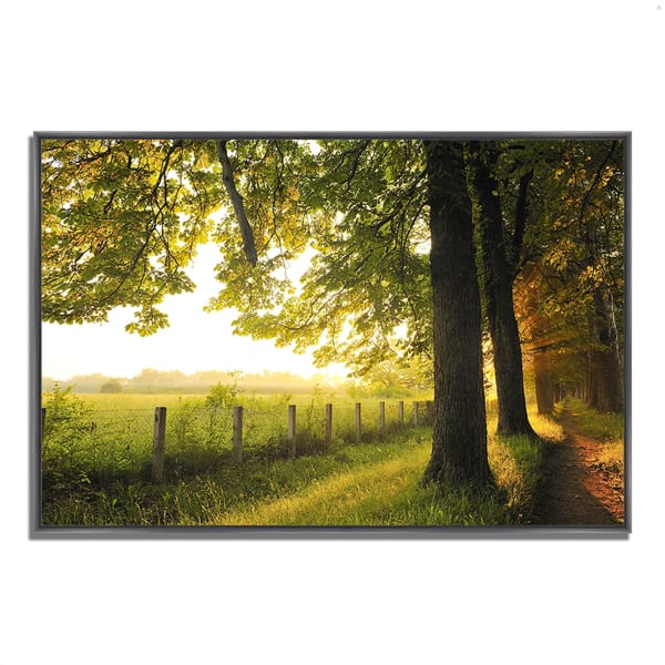 Fine Art Giclee Print on Gallery Wrap Canvas 32 In. x 22 In. Fresh Morning Sun Multi Color