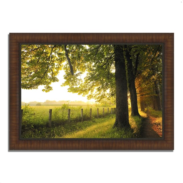 Framed Photograph Print 36 In. x 26 In. Fresh Morning Sun Multi Color