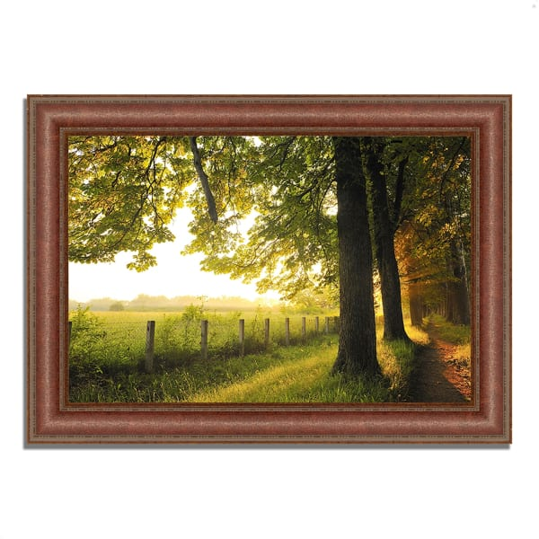 Framed Photograph Print 43 In. x 31 In. Fresh Morning Sun Multi Color