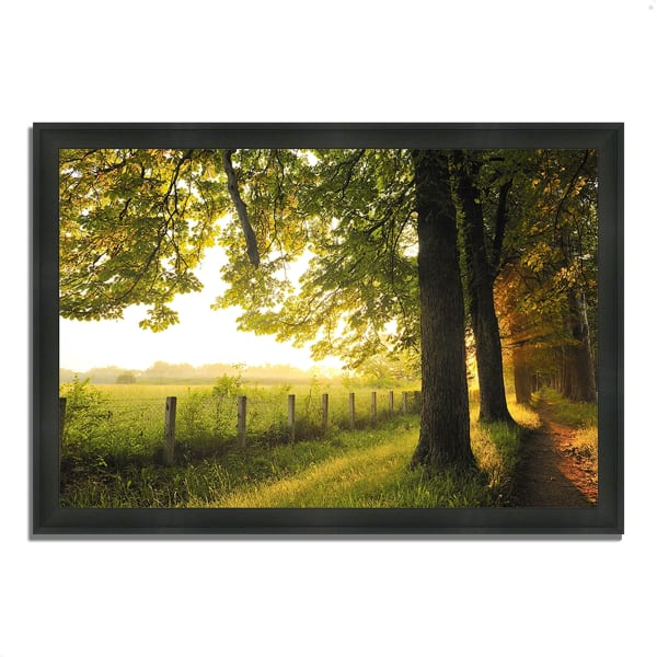 Framed Photograph Print 46 In. x 33 In. Fresh Morning Sun Multi Color