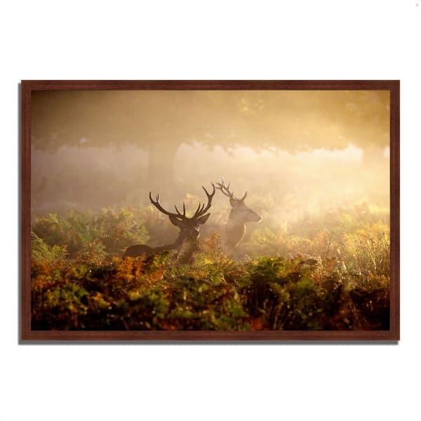 Framed Photograph Print 32 In. x 22 In. Two Stags at Dawn Multi Color