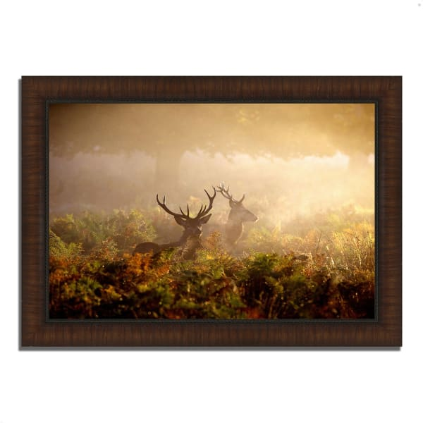 Framed Photograph Print 42 In. x 30 In. Two Stags at Dawn Multi Color