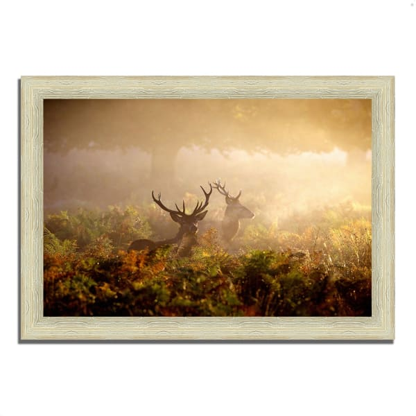 Framed Photograph Print 36 In. x 26 In. Two Stags at Dawn Multi Color
