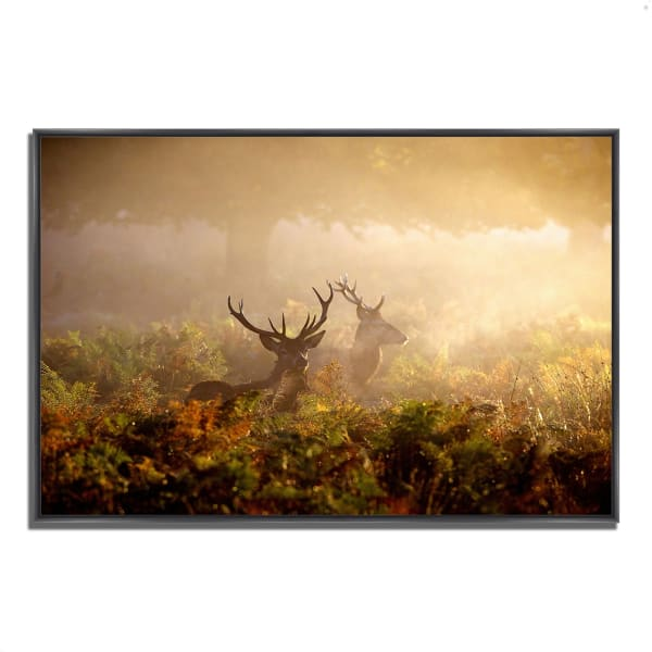 Fine Art Giclee Print on Gallery Wrap Canvas 32 In. x 22 In. Two Stags at Dawn Multi Color