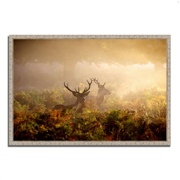 Fine Art Giclee Print on Gallery Wrap Canvas 59 In. x 40 In. Two Stags at Dawn Multi Color
