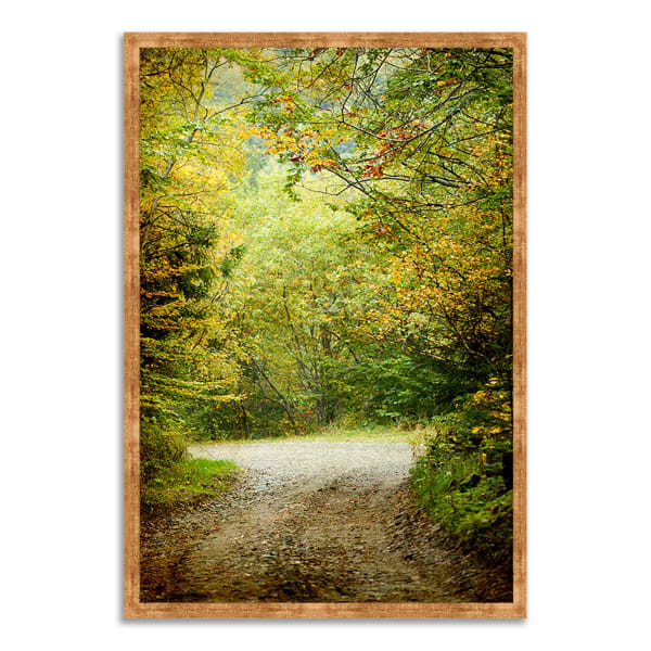 Framed Photograph Print 38 In. x 26 In. Summers End Multi Color