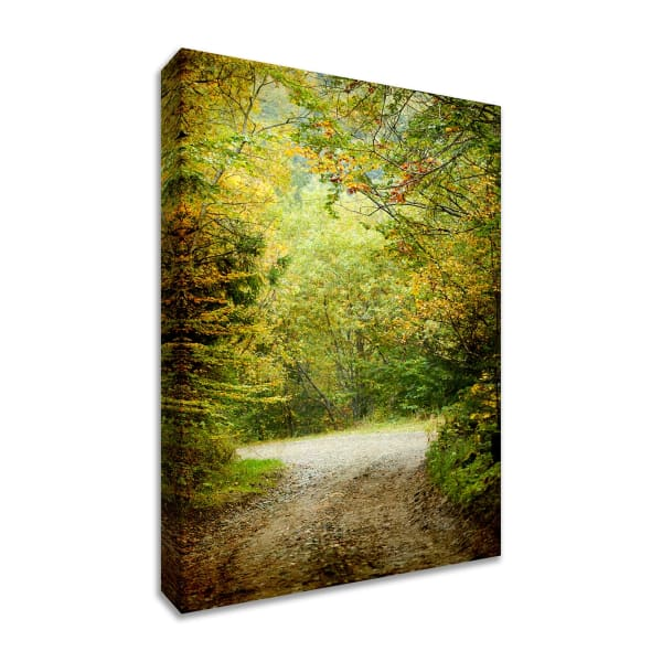 Fine Art Giclee Print on Gallery Wrap Canvas 45 In. x 30 In. Summers End Multi Color
