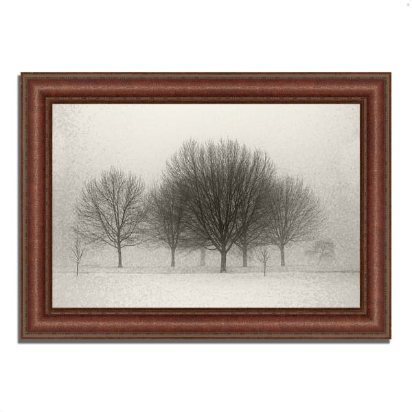Framed Photograph Print 37 In. x 27 In. Fading Memories Multi Color