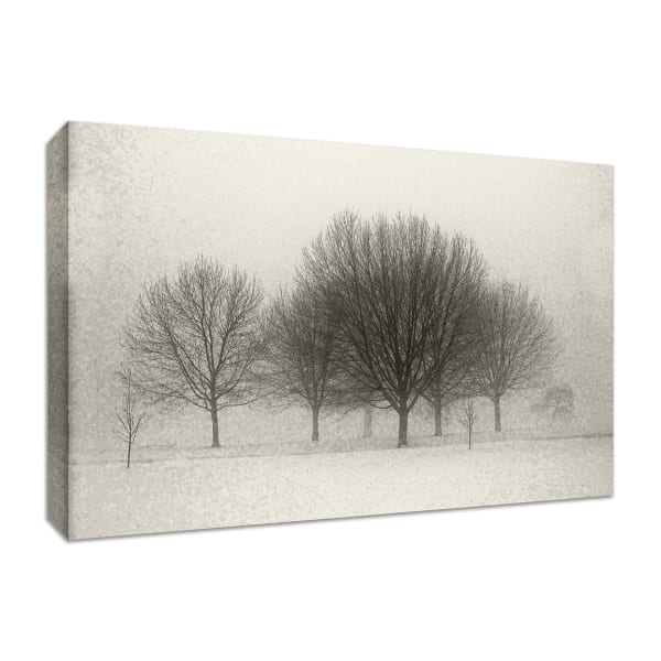 Fine Art Giclee Print on Gallery Wrap Canvas 36 In. x 24 In. Fading Memories Multi Color