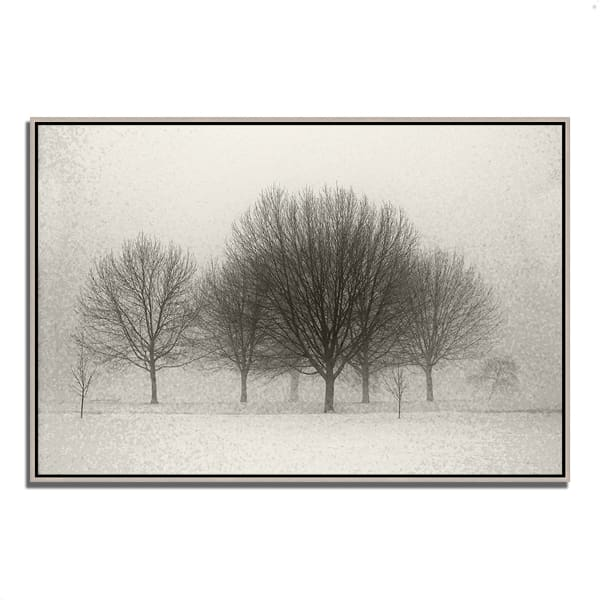 Fine Art Giclee Print on Gallery Wrap Canvas 38 In. x 26 In. Fading Memories Multi Color