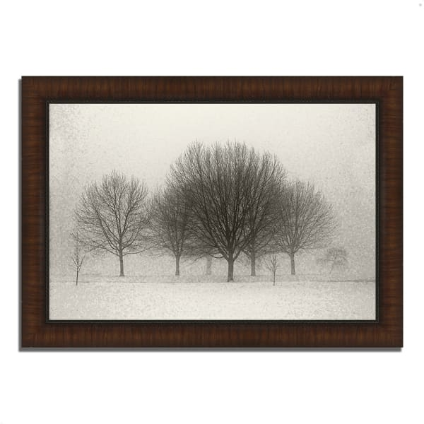 Framed Photograph Print 63 In. x 44 In. Fading Memories Multi Color
