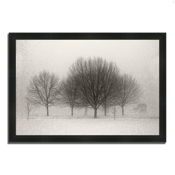 Framed Photograph Print 60 In. x 41 In. Fading Memories Multi Color