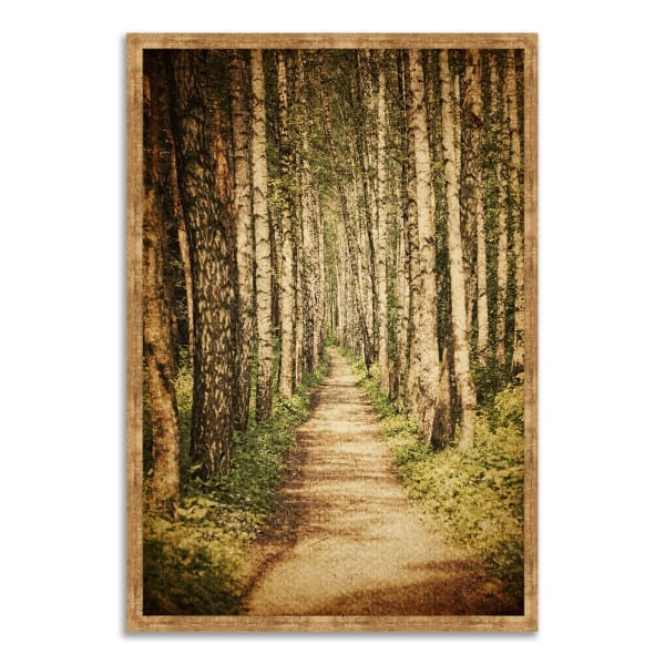 Framed Photograph Print 32 In. x 47 In. The Old Aspen Trail Multi Color