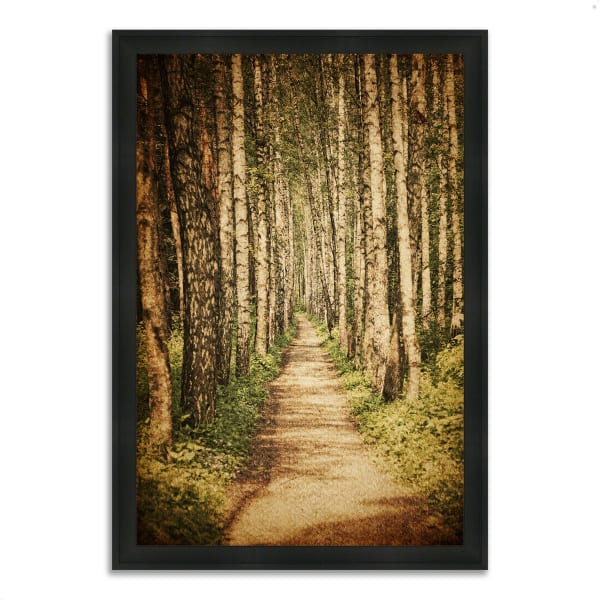 Framed Photograph Print 41 In. x 60 In. The Old Aspen Trail Multi Color