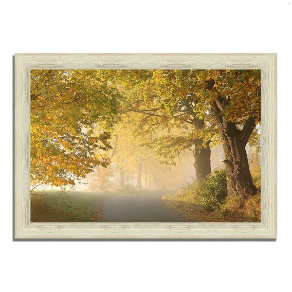 Framed Photograph Print 63 In. x 44 In. On A Misty Autumn Morning Multi Color