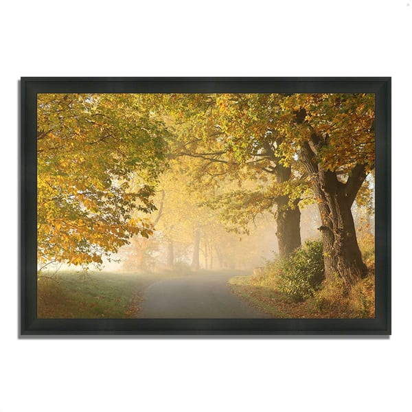 Framed Photograph Print 33 In. x 23 In. On A Misty Autumn Morning Multi Color