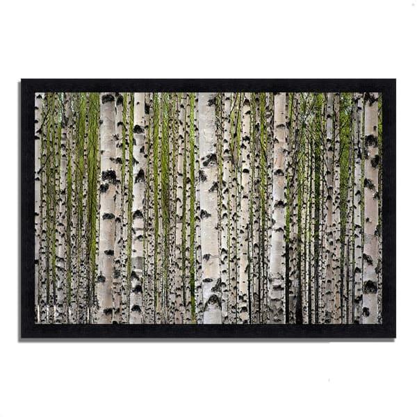 Framed Photograph Print 33 In. x 23 In. Spring Birch Multi Color