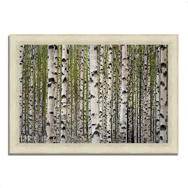 Framed Photograph Print 36 In. x 26 In. Spring Birch Multi Color