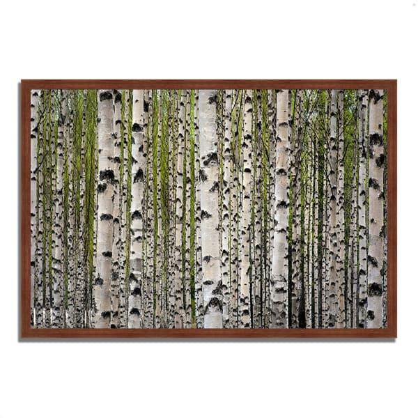 Framed Photograph Print 59 In. x 40 In. Spring Birch Multi Color