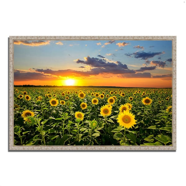 Fine Art Giclee Print on Gallery Wrap Canvas 47 In. x 32 In. Sunflower Sunset Multi Color